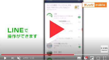 動画の写真